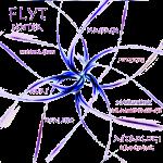 flytlogo-150x150